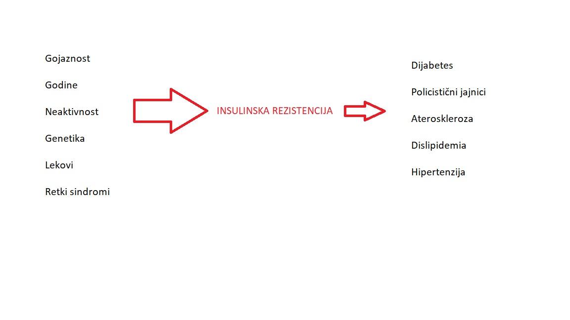 Insulinska rezistencija